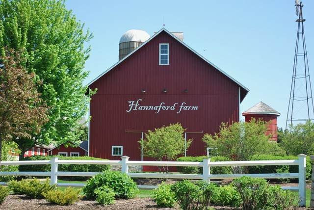 1070 Wheatfield Avenue, Sugar Grove, IL 60554 (MLS #10713543) :: Jacqui Miller Homes