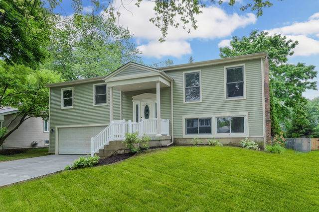 1166 Evergreen Avenue, Naperville, IL 60540 (MLS #10714300) :: Property Consultants Realty
