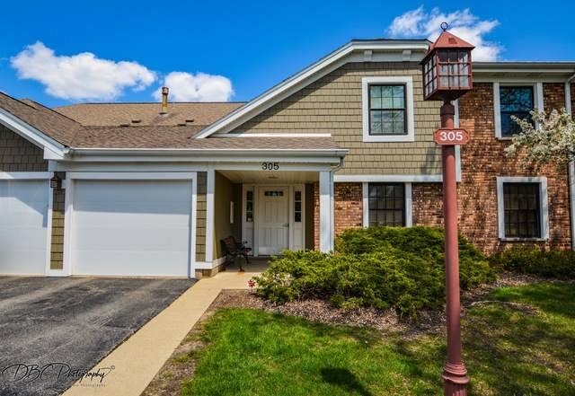 305 Wildberry Court B2, Schaumburg, IL 60193 (MLS #10714415) :: Property Consultants Realty