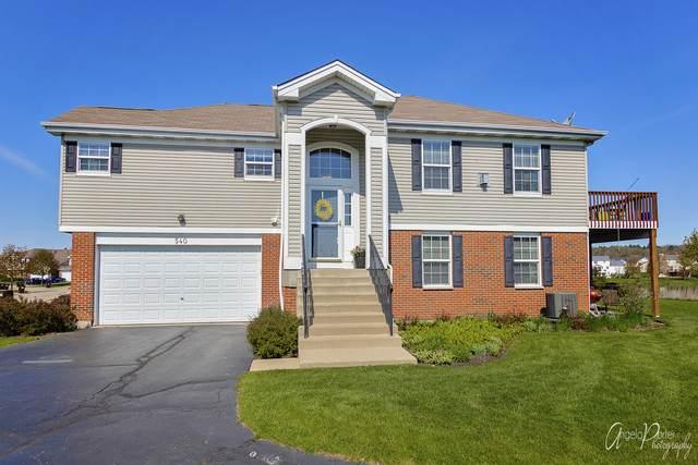540 Legend Lane #0, Mchenry, IL 60050 (MLS #10714445) :: Ryan Dallas Real Estate