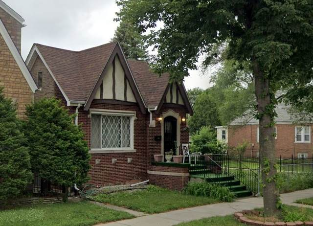 8526 S Constance Avenue, Chicago, IL 60617 (MLS #10715146) :: Littlefield Group