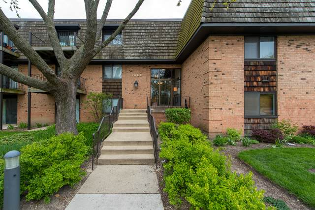 4 Oak Creek Drive #2503, Buffalo Grove, IL 60089 (MLS #10716370) :: Suburban Life Realty