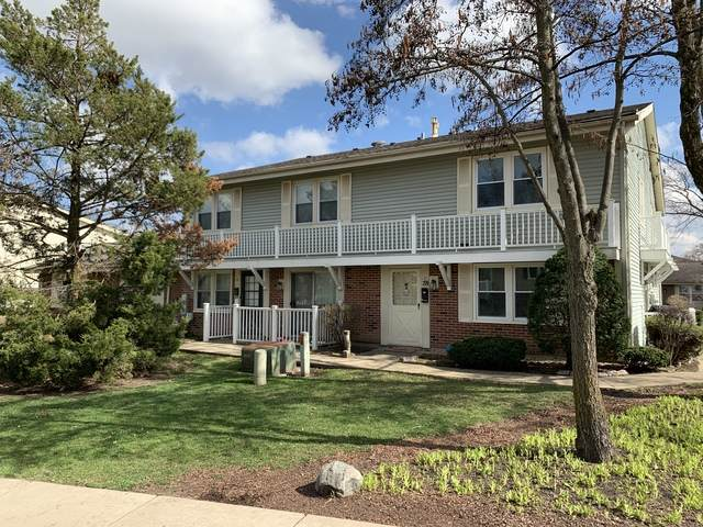 209 Dartmouth Court D, Bloomingdale, IL 60108 (MLS #10716438) :: Littlefield Group