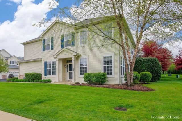 177 Durango Drive, Gilberts, IL 60136 (MLS #10716834) :: Knott's Real Estate Team