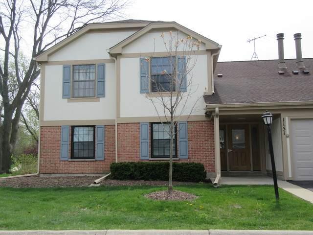 1151 Northbury Lane B1, Wheeling, IL 60090 (MLS #10717040) :: Suburban Life Realty