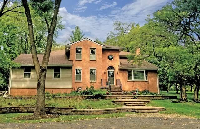 21675 N Hampton Court, Kildeer, IL 60047 (MLS #10717770) :: Ani Real Estate