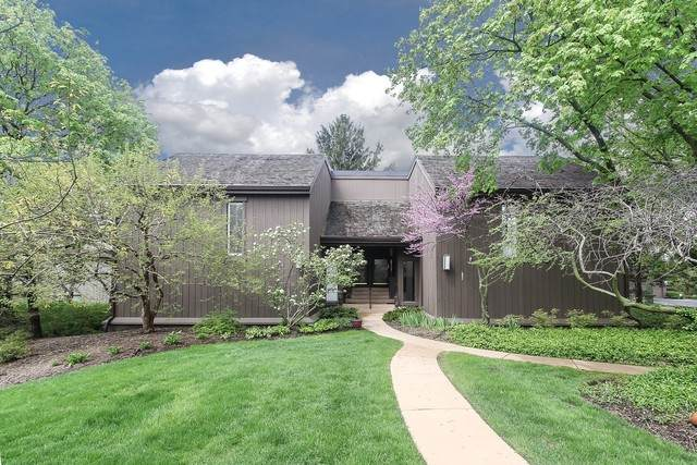 164 W Pinecrest Circle D, Lake Barrington, IL 60010 (MLS #10718070) :: Ani Real Estate