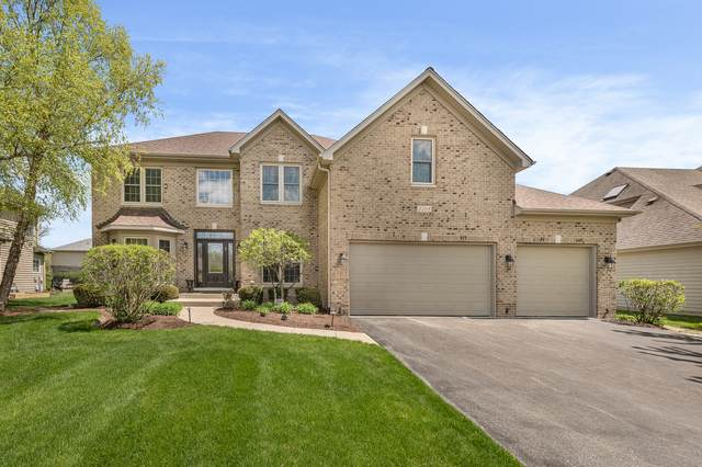 3508 Stackinghay Drive, Naperville, IL 60564 (MLS #10718160) :: Ani Real Estate