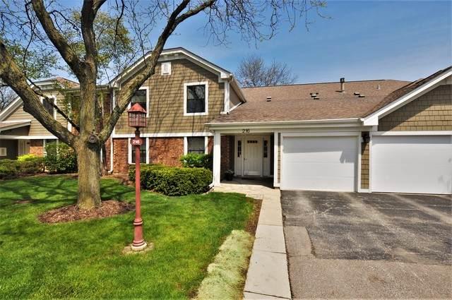 216 Deerpath Court D1, Schaumburg, IL 60193 (MLS #10718186) :: Property Consultants Realty