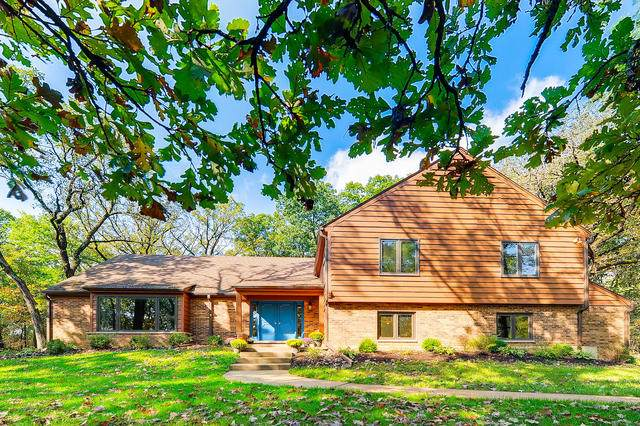 1313 Chatham Lane, Woodstock, IL 60098 (MLS #10718577) :: The Wexler Group at Keller Williams Preferred Realty