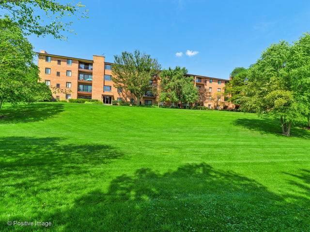 801 79th Street #301, Darien, IL 60561 (MLS #10719135) :: Angela Walker Homes Real Estate Group
