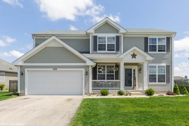 1075 Waterfront Lane, Pingree Grove, IL 60140 (MLS #10719568) :: Knott's Real Estate Team