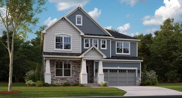 121 South Pointe Avenue, South Elgin, IL 60177 (MLS #10719668) :: Knott's Real Estate Team