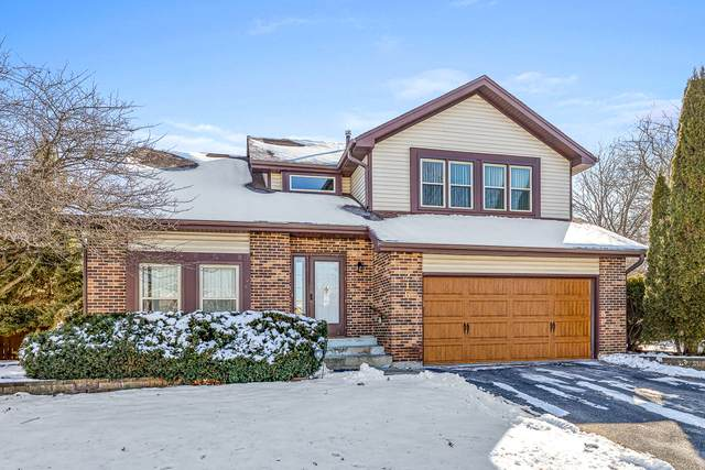 216 Cortez Court, Naperville, IL 60563 (MLS #10720308) :: Property Consultants Realty