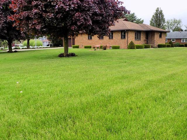 1512 E 1st Street, Streator, IL 61364 (MLS #10720463) :: The Wexler Group at Keller Williams Preferred Realty