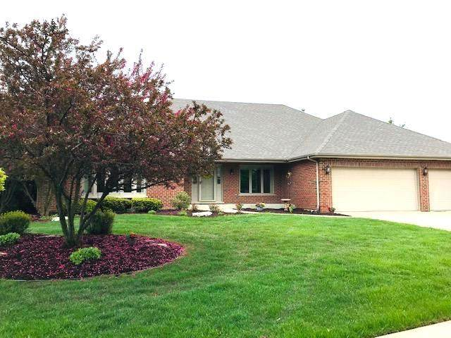 21419 Brittany Drive, Frankfort, IL 60423 (MLS #10720508) :: The Wexler Group at Keller Williams Preferred Realty