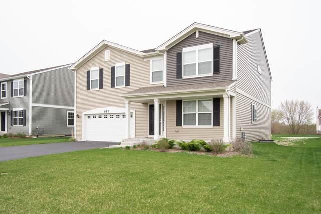 887 Timber Lake Drive, Antioch, IL 60002 (MLS #10720619) :: The Mattz Mega Group