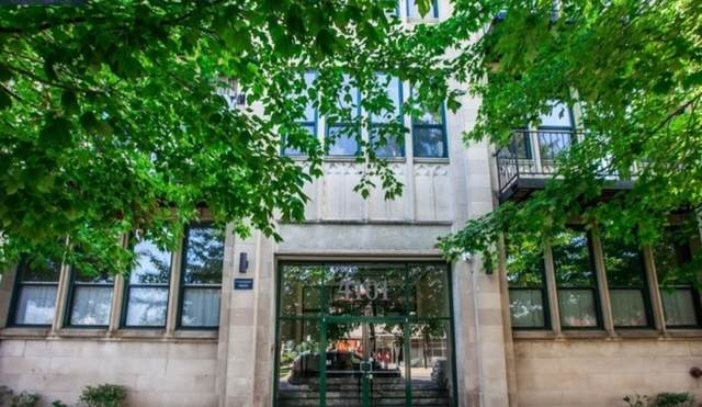 4101 S Michigan Avenue #204, Chicago, IL 60653 (MLS #10720639) :: The Wexler Group at Keller Williams Preferred Realty