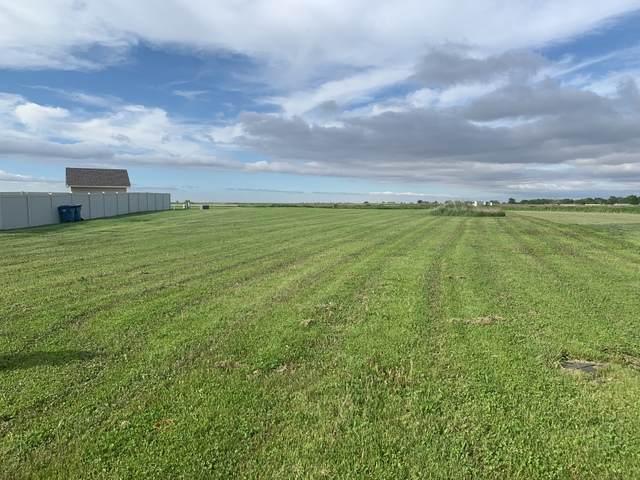 375 Spring Park Loop, Bourbonnais, IL 60914 (MLS #10720719) :: Property Consultants Realty