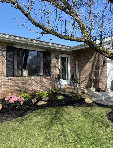 253 N Tomagene Drive, Bourbonnais, IL 60914 (MLS #10720907) :: Property Consultants Realty