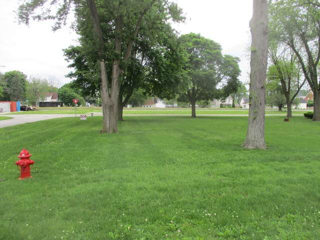 102 S Court Street, Tuscola, IL 61953 (MLS #10720998) :: Ryan Dallas Real Estate