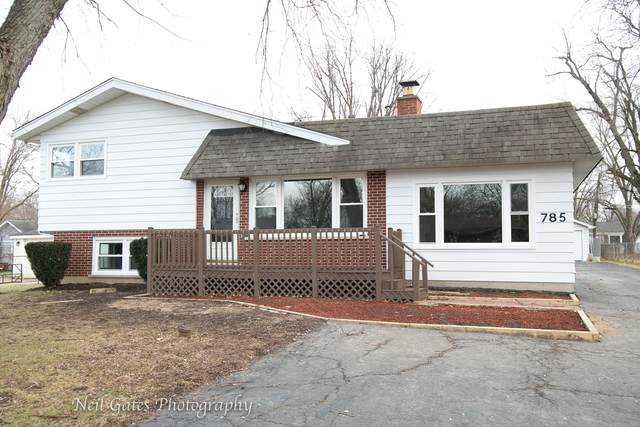 0N785 Woods Avenue, Wheaton, IL 60187 (MLS #10721104) :: Property Consultants Realty