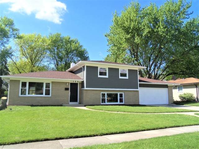 1590 Martha Drive, Elgin, IL 60123 (MLS #10721182) :: Suburban Life Realty