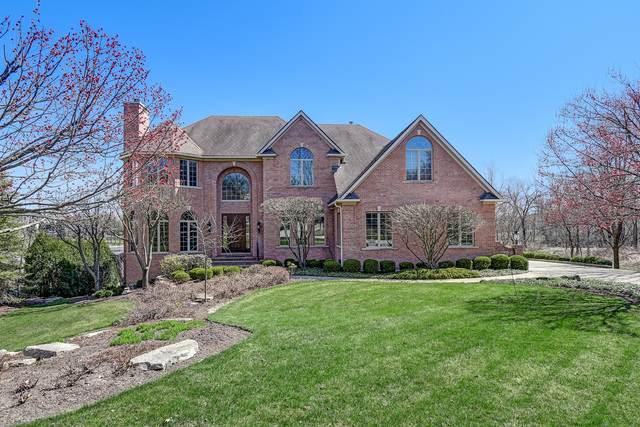 8649 Timber Ridge Drive, Burr Ridge, IL 60522 (MLS #10721348) :: John Lyons Real Estate