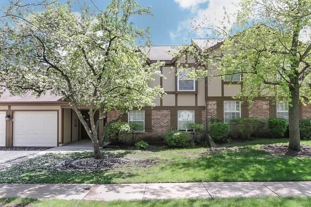 25 Illinois Avenue L2, Schaumburg, IL 60193 (MLS #10721561) :: Helen Oliveri Real Estate