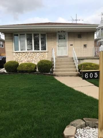 605 Manistee Avenue, Calumet City, IL 60409 (MLS #10721705) :: Littlefield Group