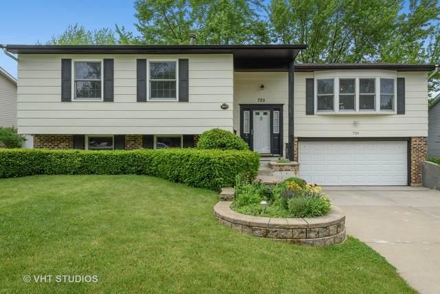 720 Portree Lane, Lake Zurich, IL 60047 (MLS #10721802) :: Ani Real Estate