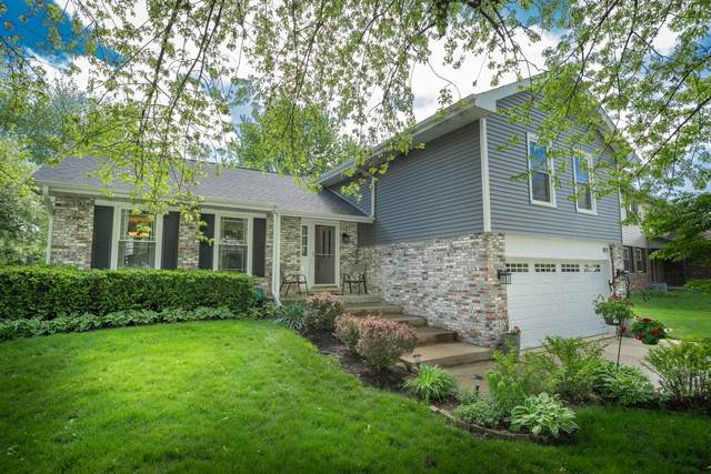 921 E Point Drive, Schaumburg, IL 60193 (MLS #10721912) :: Angela Walker Homes Real Estate Group
