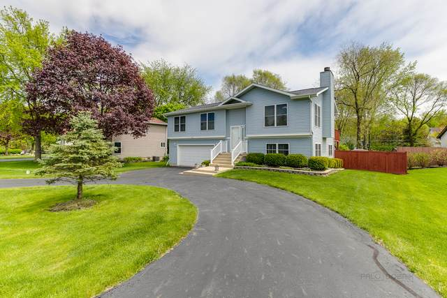 28781 N Washington Avenue, Wauconda, IL 60084 (MLS #10722102) :: The Mattz Mega Group