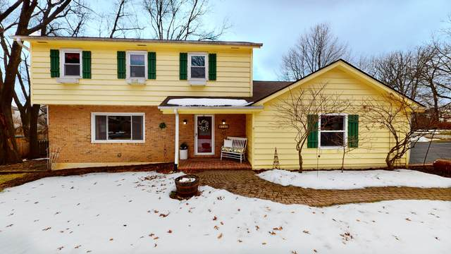 6723 Meadow Drive, Crystal Lake, IL 60012 (MLS #10722379) :: Littlefield Group