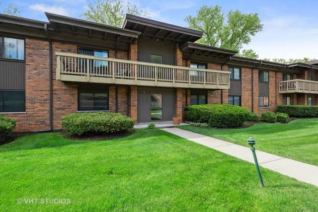 481 Duane Terrace B1, Glen Ellyn, IL 60137 (MLS #10722559) :: Littlefield Group