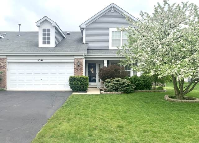 1341 Cape Cod Lane #1341, Pingree Grove, IL 60140 (MLS #10722592) :: Knott's Real Estate Team