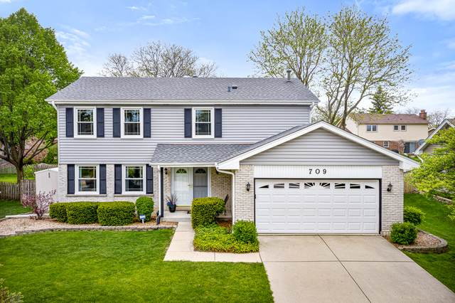 709 Prince Edward Drive, Schaumburg, IL 60193 (MLS #10722786) :: Angela Walker Homes Real Estate Group