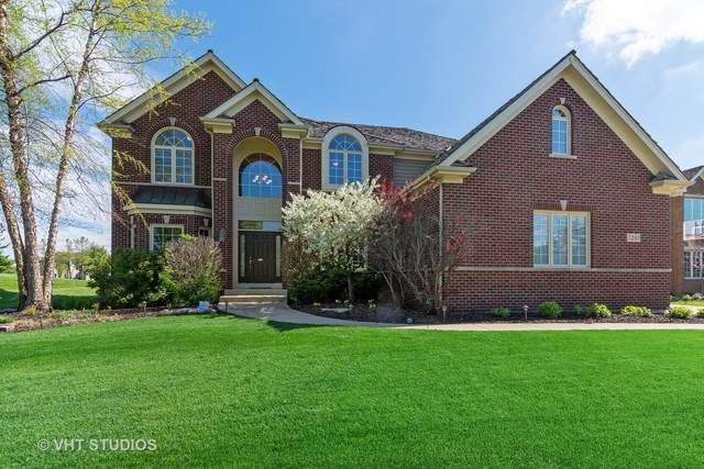 1201 Brookside Drive, South Elgin, IL 60177 (MLS #10722788) :: Knott's Real Estate Team