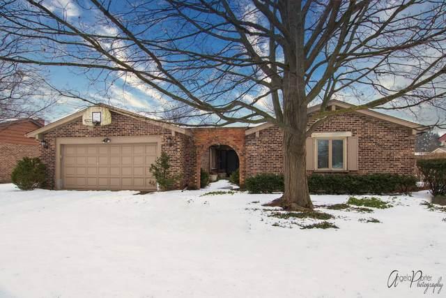 3901 Joanne Drive, Glenview, IL 60026 (MLS #10723156) :: Helen Oliveri Real Estate