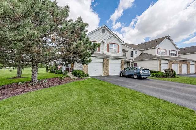 24191 Pear Tree Circle, Plainfield, IL 60585 (MLS #10723320) :: Property Consultants Realty