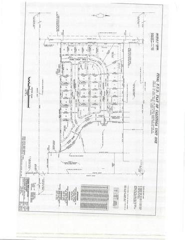 2161 Stone Creek Drive, New Lenox, IL 60451 (MLS #10723522) :: Littlefield Group