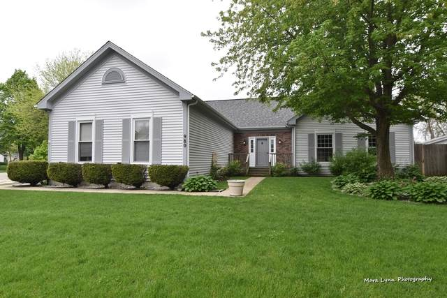 980 Hampshire Lane, Elgin, IL 60120 (MLS #10723532) :: Knott's Real Estate Team