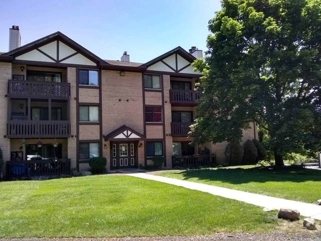 6015 Lakeside Place 102A, Tinley Park, IL 60477 (MLS #10723672) :: The Wexler Group at Keller Williams Preferred Realty