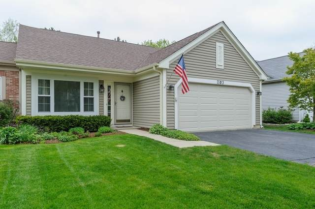 1103 Blackburn Drive, Grayslake, IL 60030 (MLS #10723698) :: Property Consultants Realty
