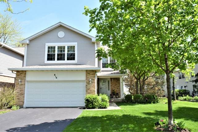 816 Harper Avenue, Cary, IL 60013 (MLS #10723919) :: Property Consultants Realty