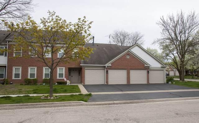 153 Brookston Drive D1, Schaumburg, IL 60193 (MLS #10723923) :: Janet Jurich