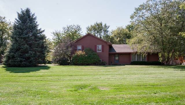 2317 Colby Point Road, Mchenry, IL 60050 (MLS #10724084) :: The Dena Furlow Team - Keller Williams Realty