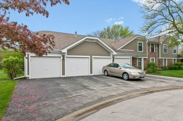 220 Hawthorne Court A1, Schaumburg, IL 60193 (MLS #10724087) :: Property Consultants Realty