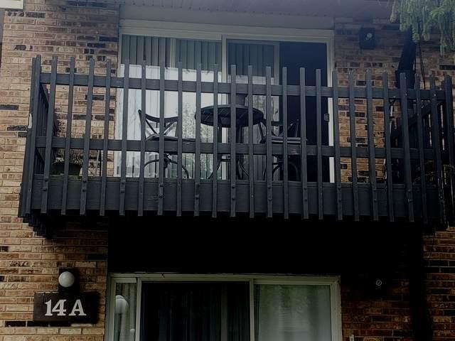 14A Kingery Quarter #202, Willowbrook, IL 60527 (MLS #10724152) :: Littlefield Group