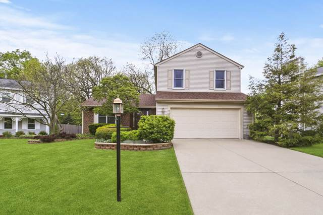 127 Canton Lane, Streamwood, IL 60107 (MLS #10724161) :: Property Consultants Realty